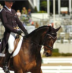 Rolex 2013 Dressage Day 1 Recap on VR. Andrew Nicholson currently leads.