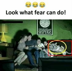 Enjoy the Best Collections of Funny Memes - Trending & Viral Meme Ever - Most Popular on Internet Now a Days. Memes about Life and more. Very Funny Memes, Funny Internet Memes, Funny School Jokes, Some Funny Jokes, Funny Facts, Hilarious, Funny Humor, Funny Images, Funny Photos