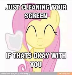 Thanks, Fluttershy!