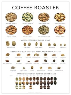 Caffeine Legumes, Soil Gourmet coffee, Flavoured and Espresso Coffee Love, Best Coffee, Coffee Shop, Coffee Barista, Espresso Coffee, Starbucks Coffee, Coffee Facts, Coffee Quotes, Coffee Infographic