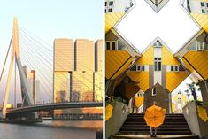 Are you on a budget but looking for some fun things to do in the city? In this article we list 8 Free Things to do in Rotterdam. Free Things To Do, Fun Things, Luxor, Rotterdam, Some Fun, Holland, Opera House, Stuff To Do, Activities