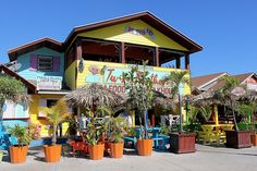Twin Brothers Steak and Seafood Bar Restaurant Arawak Cay Nassau Paradise Island Bahamas