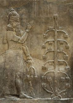Genie with a poppy flower. Relief from the Palace of king Sargon II at Dur Sharrukin in Assyria (now Khorsabad in Iraq), 716–713 BC.