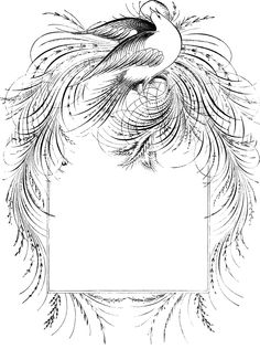 Description A border of a bird. Flourish Calligraphy, Calligraphy Drawing, Calligraphy Words, Penmanship, Outline Drawings, Art Drawings Sketches, Pop Up Flower Cards, Fundraising Crafts, Calligraphy For Beginners