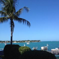 Great guest photo - what an awesome view! Don't forget to follow us on Instagram @WestinKeyWest.