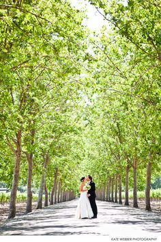 Beaulieu Garden Wedding, Rutherford | Kristi Amoroso Special Events