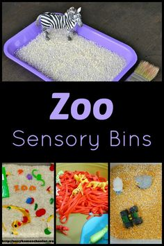 Zoo Sensory Bins...fun ways to learn about animals through sensory play!