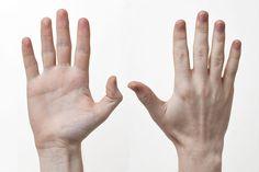 File:Human-Hands-Front-Back.jpg