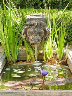 A landscape water feature can suit any garden style, garden size, or gardener's time commitment. If you're considering adding a landscape water feature or expanding one you already have, get inspired with our guide to landscape water features. Small Water Features, Outdoor Water Features, Water Features In The Garden, Small Fountains, Garden Fountains, Garden Pond, Backyard Water Feature, Ponds Backyard, Pond Landscaping