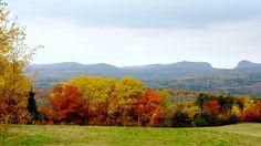 Mid Burke Mountain Foliage, Northeast Kingdom Vermont