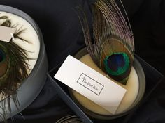 The Bird Box scented candles made from natural pure essential oils