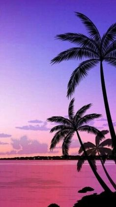 Beachy wallpaper iphone summer backgrounds palm trees Ideas for 2020 Sunset Iphone Wallpaper, Beach Sunset Wallpaper, Summer Wallpaper, Nature Wallpaper, Wallpaper Backgrounds, Wallpaper Quotes, Iphone Wallpapers, Trendy Wallpaper, Hipster Wallpaper