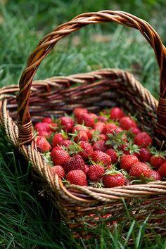 Ricas en agua, vitamina C y sustancias antioxidantes, entre otras propiedades nutritivas, consúmelas de temporada (marzo a julio).