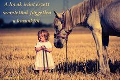 Equestrian Quotes, Minden, Horses, Random, Animals, Animales, Animaux, Animal, Animais