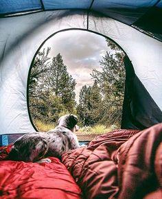 Dogs enjoy camp views, too. :)