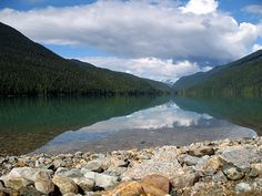 Located in Garibaldi Provincial Park, Cheakamus Lake offers an easy hike to a turquoise lake surrounded by lush forests. Vancouver City, 5 Hours, Whistler, Forests, British Columbia, Cricket, Wilderness, Kayaking, Lush