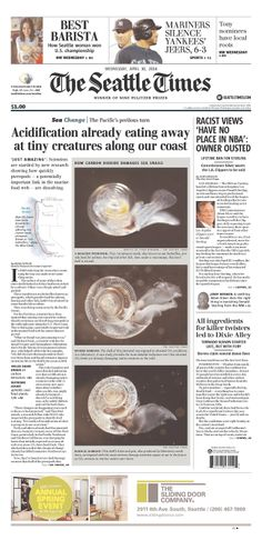Stark photos on Seattle Times show effect of acidification on sea snails