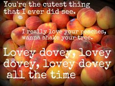 Image result for really love your peaches wanna shake your tree meaning