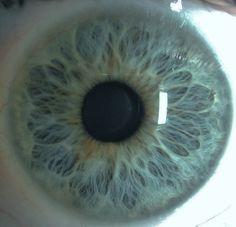 my iris #eye #iris #blue #pretty #patterns #photography