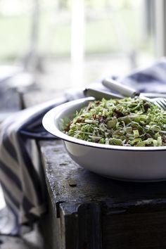 10 salater til juleand og flæskesteg | Tilbehør julemad >> Broccoli Pesto, Parmesan, Bacon, Salad, Beef, Treats, Snacks, Recipes, Food