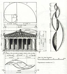 The Classical system is influential because the ideals and philosophy behind the system is not only based on what's practical but is also geometrically sound, attractive to the eye and functional engineering wise. One can only say that the Classical orders are orders of visual splendor and cohesion. Call us at: 212-461-0245 // 212-913-9588 Sales@AncientSurfaces.com  http://www.ancientsurfaces.com/Golden-Ratio.html
