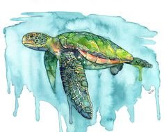 Watercolor Sea Turtle Painting Print by TheColorfulCatStudio