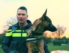 Er is weer een kersverse video van politiehond BUMPER - Te zien in dit artikel Superhero, American, Fictional Characters, Fantasy Characters
