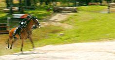 Haras du Pin 2016 - Grand National circuit | © FFE TV  Lieutenant Colonel Thibaut Vallette and QING DU BRIOT