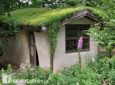 This straw bale music room, dripping in greenery and surrounded by flowers, is in Bethlehem, PA, USA. It's by Sigi Koko. It has a rubble trench foundation with an earthen floor and the straw bale walls are plastered inside with clay and outside with lime. Other bits and pieces were salvaged; all looking good under its living roof. Read about living roofs on Sigi's website and see more of her work on her facebook page: Build Naturally