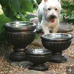 Put metal dog bowls in planters for a great patio look and to elevate the bowl - Hand in Paw