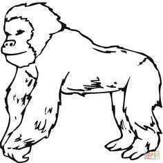 Gorilla template drawing (cdn.vectorstock.com, 2015