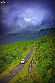 Monsoon beauty of Vagamon(Malayalam: വാഗമണ്), Idukki, Kerala, India.    photo by:Mayookh V
