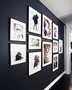 I LOVE the dark wall with the white.perfect for the wall across from the front., I LOVE the dark wall with the white.perfect for the wall across from the front. Family Pictures On Wall, Wall Photos, Framed Pictures, Displaying Photos On Wall, Wall Decor With Pictures, Pictures For Bedroom Walls, Hallway Pictures, Family Wall, Inspiration Wand