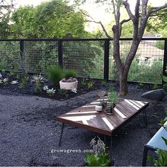 Modern garden with new open hogwire fence designed by Beth Mullins at…