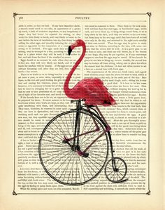 Pink Flamingo riding Bicycle Unicycle Vintage by curiousprintery (AIW)