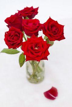 Ramo de mis flores favoritas
