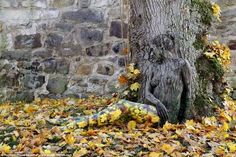 Image result for bodypainting vines leaves 3D
