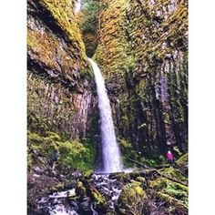 Dry Creek Falls, Portland, Oregon | 16 Of The Most Photogenic Hikes On The West Coast