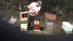 Don The Fat Bee Man - YouTube