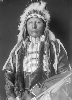 Photographs of American Indians : Horse Chief (Son of White Eagle) - Ponca 1906 Native American Pictures, Native American Quotes, Native American Tribes, Native American History, American Symbols, Sioux, Oklahoma, Eskimo, Native Indian