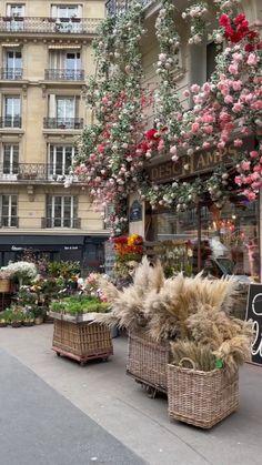 Love Flowers, Beautiful Flowers, Beautiful Places, Beautiful Flower Arrangements, Floral Arrangements, Garden Yard Ideas, Balcony Garden, Flower Power, My Flower