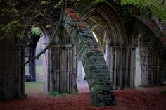 https://flic.kr/p/6U5SEr | Autumn Arch | Some ruins of an old church in Wales; the colours are only slightly saturated, they really were that vivid!
