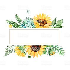 Beautiful watercolor frame border with sunflowers - Royalty-free Sunflower stock illustration Watercolor Border, Watercolor Sunflower, Sunflower Art, Watercolor Flowers, Watercolor Paintings, Flower Background Wallpaper, Flower Backgrounds, Logo Fleur, Arte Tribal