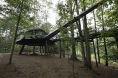 Space Crab Treehouse Animal Planet