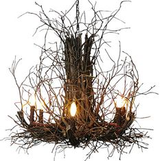 Appalachian Branch Chandelier - rustic - Chandeliers - Indeed Decor  What the hell is this monstrosity? Straight out of Blair Witch Project!