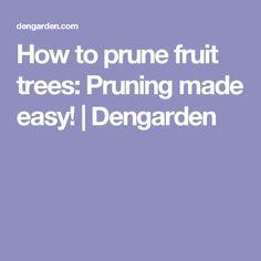 How to prune fruit trees: Pruning made easy! | Dengarden