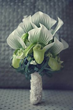 Gorgeous Wedding Posy Featuring: Green/White Lady's Slipper Orchids & Green Lily Grass Loops Hand Tied & Wrapped In Lace~~