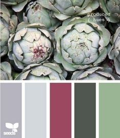 color pallet for-the-home-diy. Take a photo of nature and use as a color pallet. Would be nice natural christmas colors