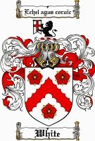 White Coat of Arms / White Family Crest gifts at www.4crests.com