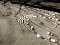 Jemina Staalon Veden vuosi 2: Oksia ja vieläkin Staalo vetten päällä